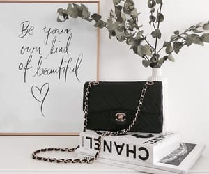 accessories, bag, and books image