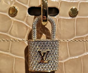 expensive, Louis Vuitton, and LV image
