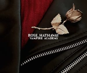 books, rose hathaway, and dhampir image