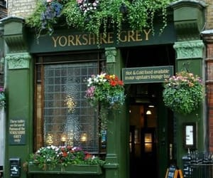 flowers, london, and pub image