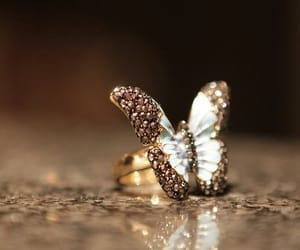 ring, butterfly, and accessories image