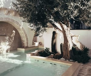 tree, pool, and summer image