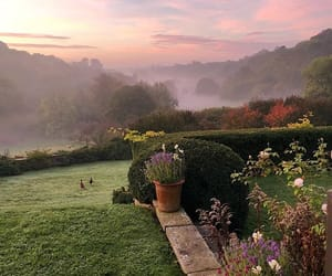 garden, landscape, and misty image