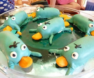 cake, Platypus, and perry image