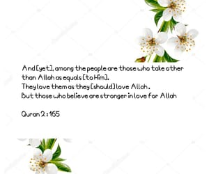 allah, muslim, and quotes image