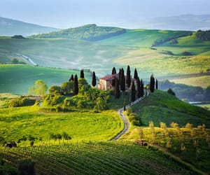 italy, Tuscany, and nature image