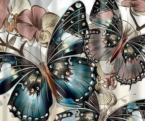 big, butterflies, and colorful image
