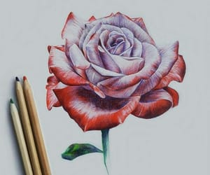 art, drawings, and arte image