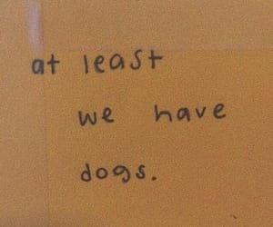 dog, quotes, and animal image