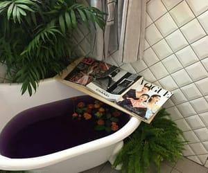 magazine, aesthetic, and plants image