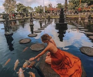 travel, dress, and fish image