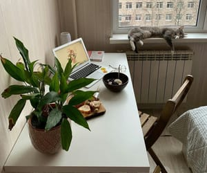atmosphere, desk, and photo image