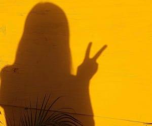 shadow, yellow, and sunshine image