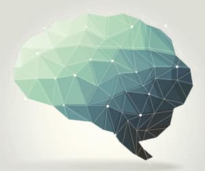 brain, colours, and creativity image