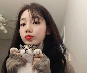 girl, cat, and ulzzang image