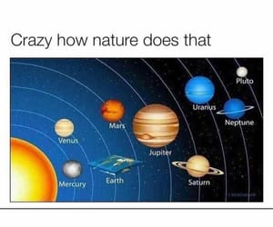 humor, meme, and flat earthers image