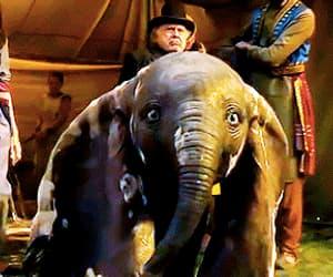adorable, baby elephant, and sweet image