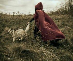 cloak, dog, and fantasy image
