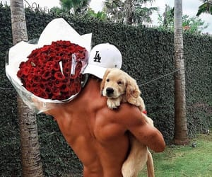 dog, flowers, and boy image