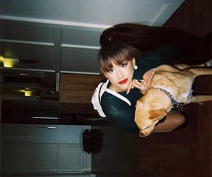 Toulouse, ariana grande, and moonlightbae image