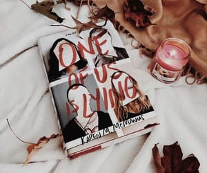 books, mystery, and one of us is lying image