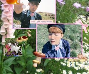 flower, hoseok, and natur image