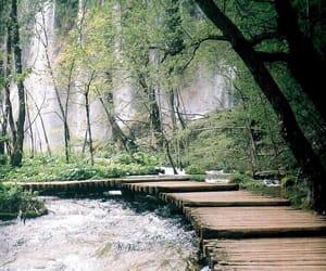 Croatia, plitvice lakes, and national park image