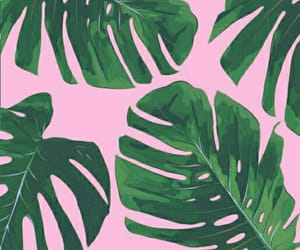 green, patterns, and pink image