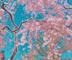 brown, cherry blossom, and culture image