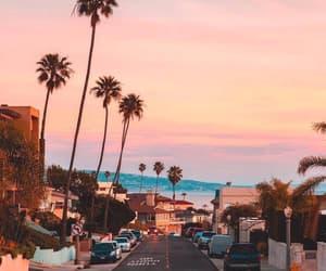 sunset, travel, and palms image