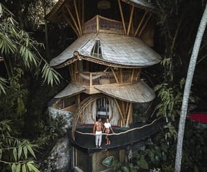 bamboo, goals, and home image
