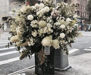 flowers, new york, and street image