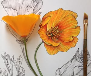 flowers, art, and orange image