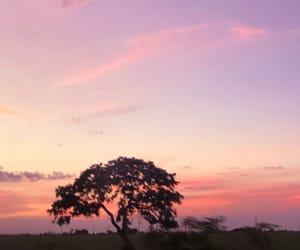 morning, por do sol, and orange image