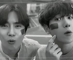 exo, exo-cbx, and gif image