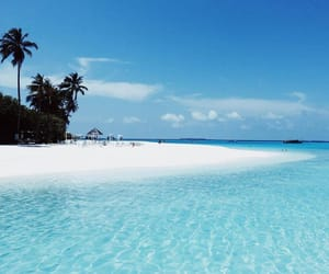 beach, picture, and Maldives image