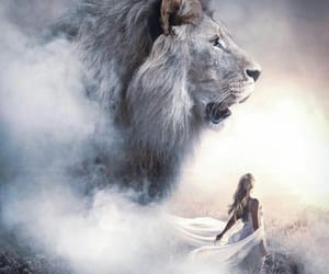 life and lion image