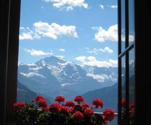 mountains, flowers, and sky image