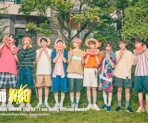 article, kpop, and stray kids image