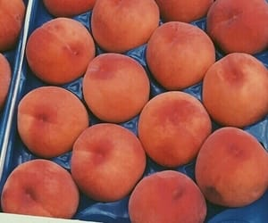 theme, peach, and retro image