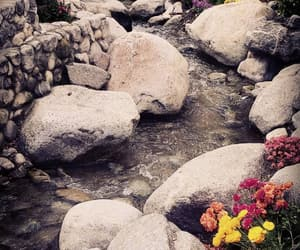 flowers, rocks, and nature image