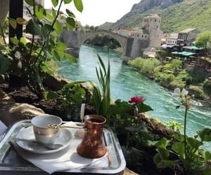 travel, nature, and coffee image