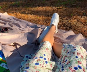 fun, nature, and picnic image