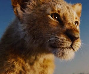 the lion king and live action image