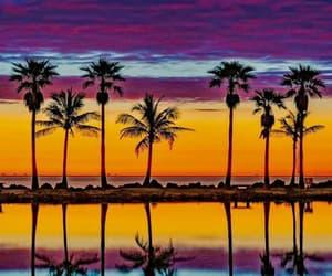 beautiful, florida, and Miami image