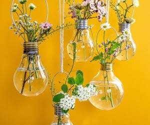 aesthetic, bulbs, and flowers image