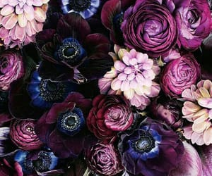 flowers, purple, and beautiful image