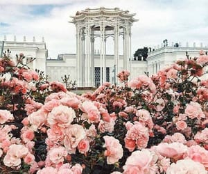 building and flowers image