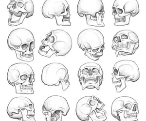 b&w, skull, and skeleton image