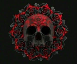 skeleton, skull, and red skull image